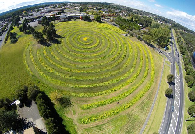"The largest and most ""designed"" of the 2014 plantings took the form of a 2.4-kilometre-long spiral on the site of the former Moe public hospital."