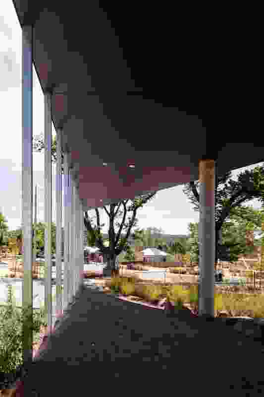 The angled canopy at the north-west edge of the site provides a shaded civic space suited to ceremonial and casual use.