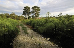 2010 AILA National Landscape Architecture Award: Excellence for Land Management