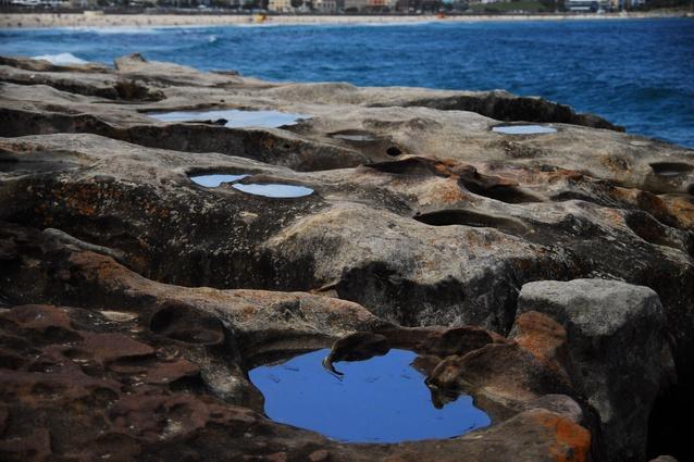 Lucy Humphrey <em>Alchemy</em> for 2009 <em>Sculpture by the Sea</em>, Bondi.