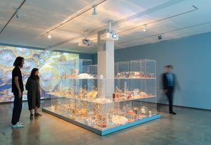 Janet Laurence, Deep Breathing: Resuscitation for the Reef, 2015–16/2019, installation view, Museum of Contemporary Art (MCA) Australia, 2019. Image courtesy and copyright the artist.