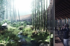 Hassell wins competition to design 'Panda Land' in China