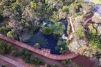 Bridging the divide: Jock Marshall Reserve Nature Walk