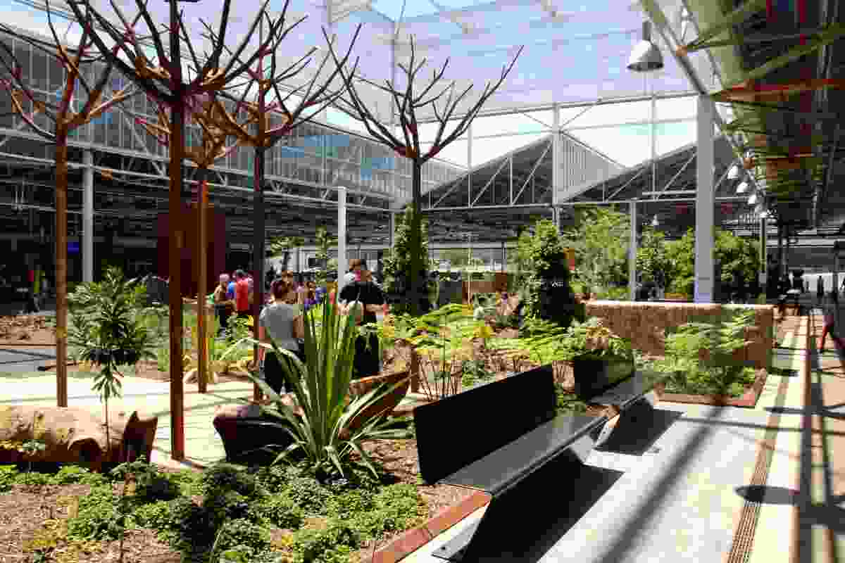 Tonsley Public Realm by Oxigen with Renewal SA.