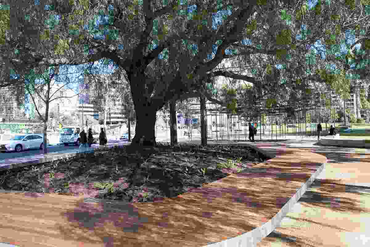 A new circular deck seat has been built beneath a large 100-year-old peppercorn tree in the park.