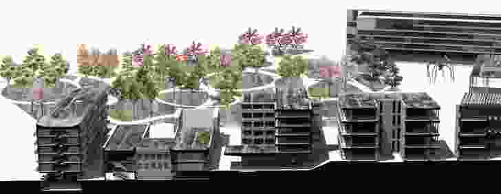 Ysalazam (Colombia): An urban forest in combination with new developments.