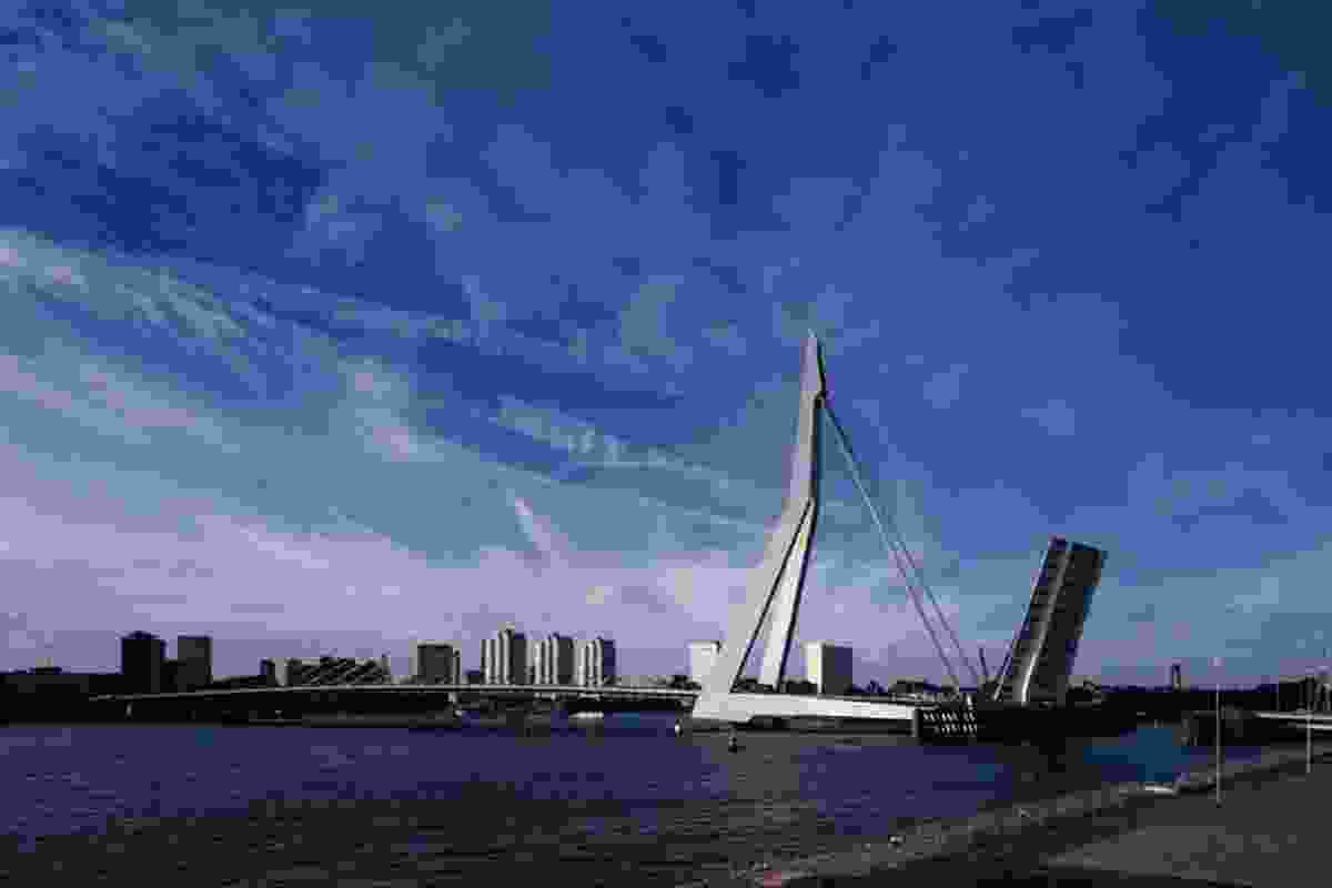 Erasmus Bridge in Rotterdam.
