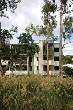 "The ""raw and uncompromising"" facade of the Grey Gums Apartments. The affordable housing project is sited at the Kelvin Grove Urban Village, two kilometres from Brisbane's CBD. Image: Jason Haigh."