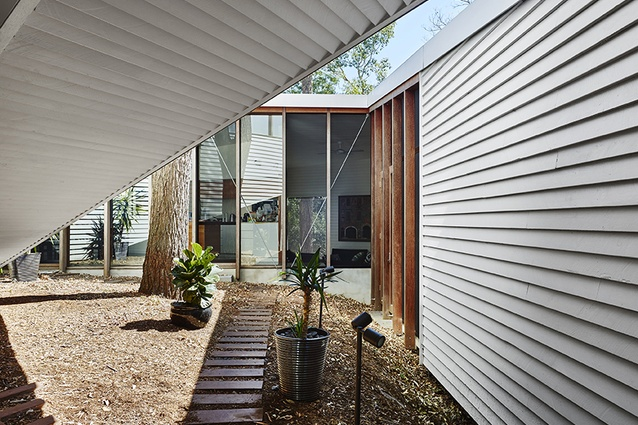 As a familiar material in an unfamiliar form, the weatherboard strongly emphasizes the relationship of the house to the ground.