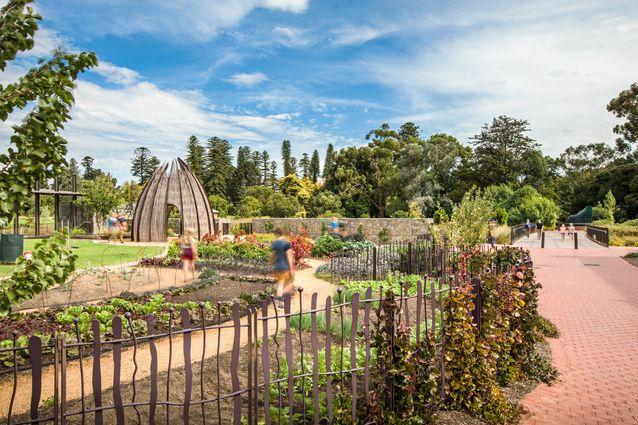winners announced  2017 south australian landscape architecture awards