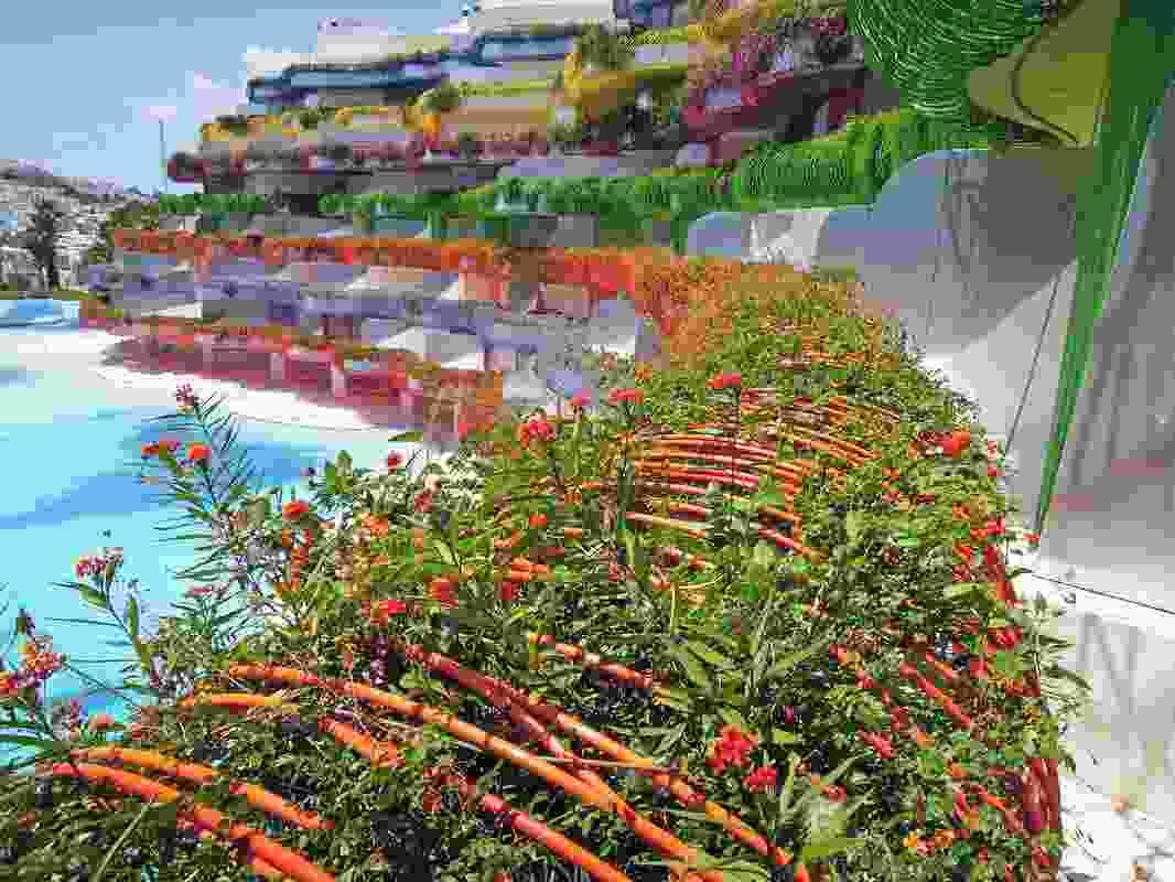Patrick Blanc garden inBoas de Ibiza, Spain.
