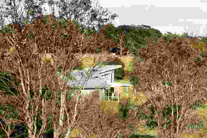 The house as seen through a shelter belt planting at the perimeter of the property.