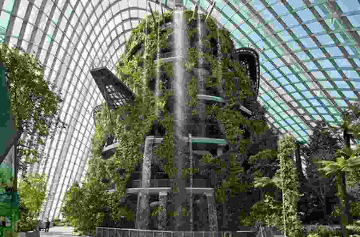 The Cloud Forest conservatory brings a misty mountain rainforest learning centre to Singapore.