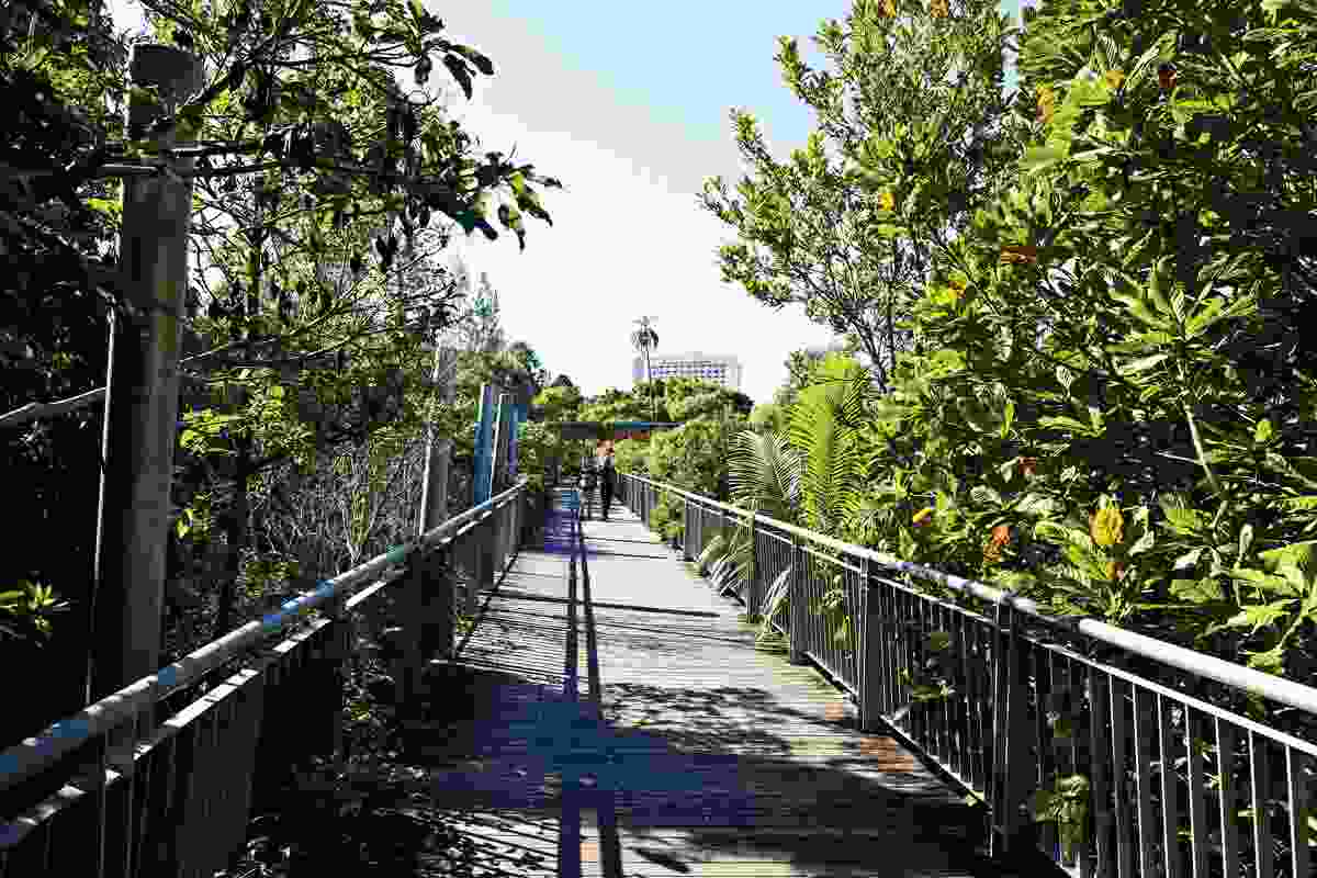 This elevated walkway not only provides a connection across the parkland, but also a lookout over the water.