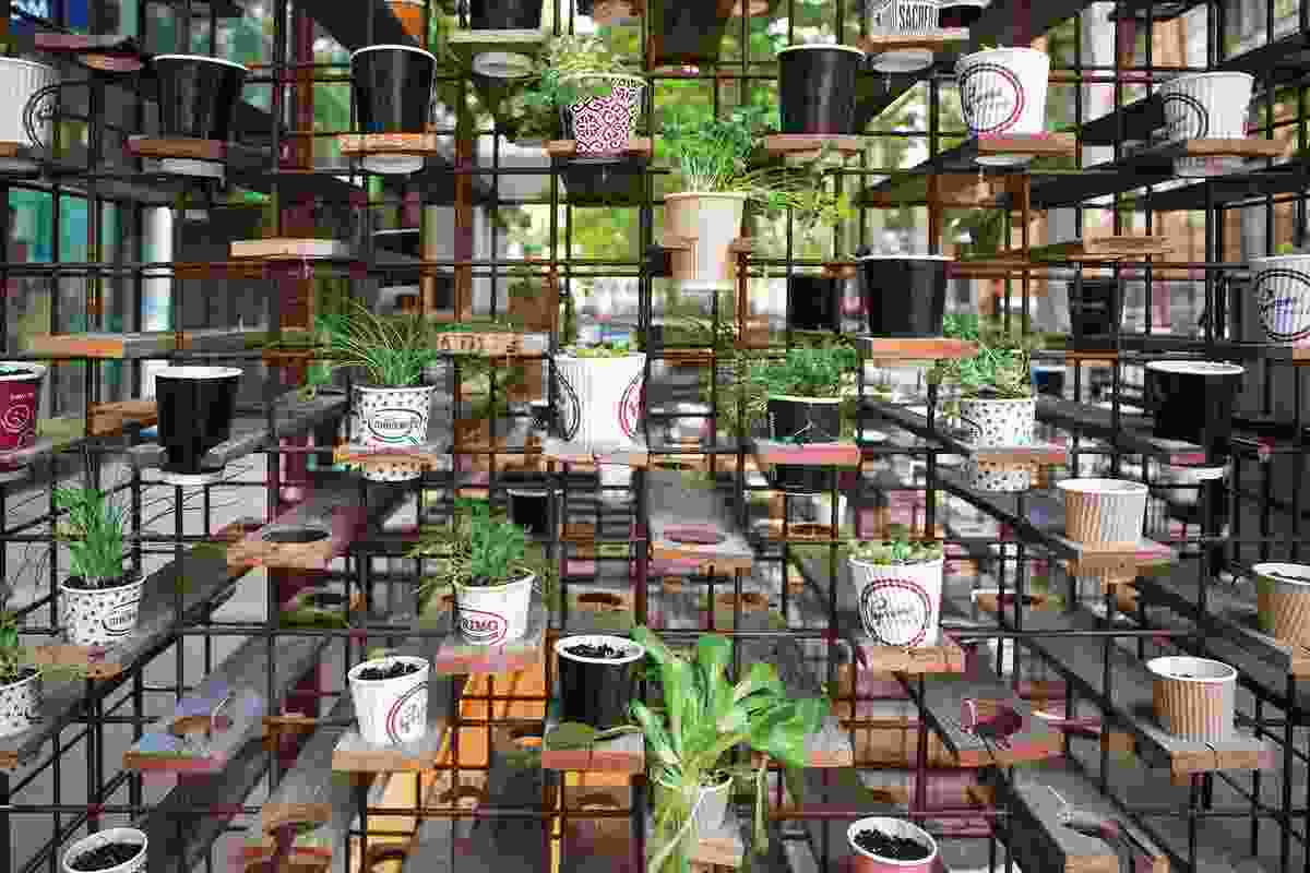 Designed by a student team from the University of New South Wales, Green is Gold is a project incorporating coffee cups filled with soil and seedlings.