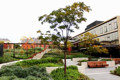 Bendigo Hospital Project by Oculus Landscape Architecture and Urban Design won the Award of Excellence in the Civic Landscape category.