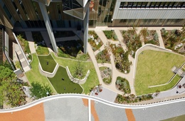 Botanical remedy: Fiona Stanley Hospital landscapes