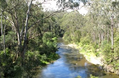 New law finally gives voice to the Yarra River's traditional owners