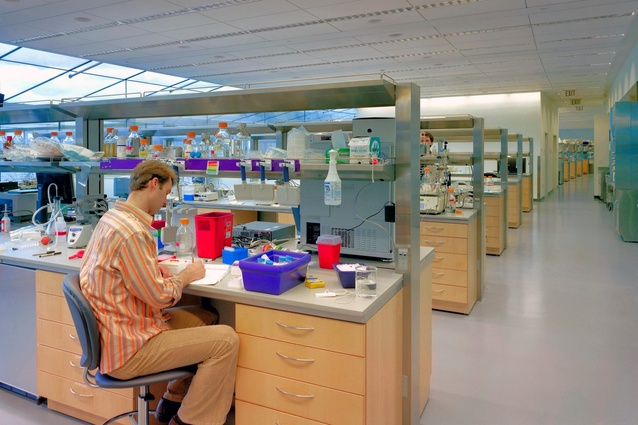 Highly adaptable laboratory benching system, with sustainable materials and finishes, and natural daylight: Howard Hughes Medical Institute, Ashburn, Virginia.