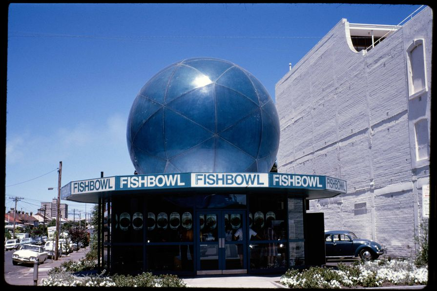 Neptune's Fishbowl in South Yarra by Robin Boyd, completed 1970.