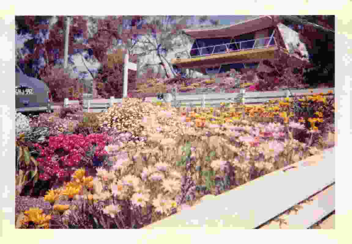 A photograph of the Butterfly House taken in the late 1970s.