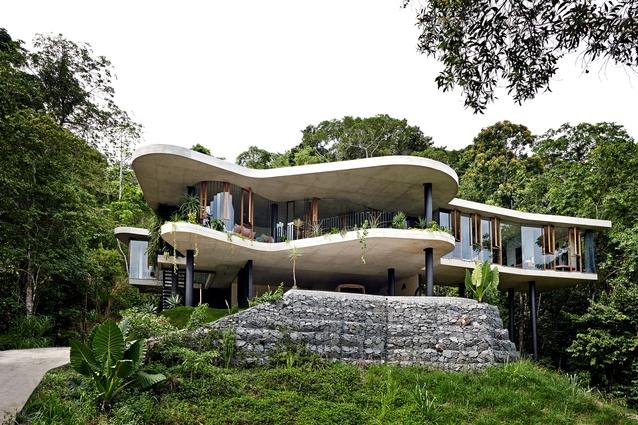 Planchonella House by Jesse Bennett Architect.