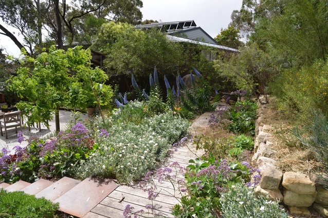 Winners announced 2017 south australian landscape for Adelaide innovative landscaping