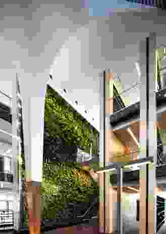 Like FJMT's Surry Hills Library, BLaKC incorporates a green wall component.
