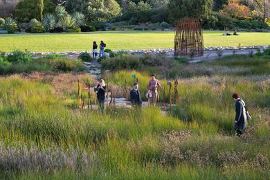 Kate Cullity and other TCL staff at the Adelaide Botanic Gardens Wetland by TCL, SKM, David Lancashire Design and Paul Thompson.