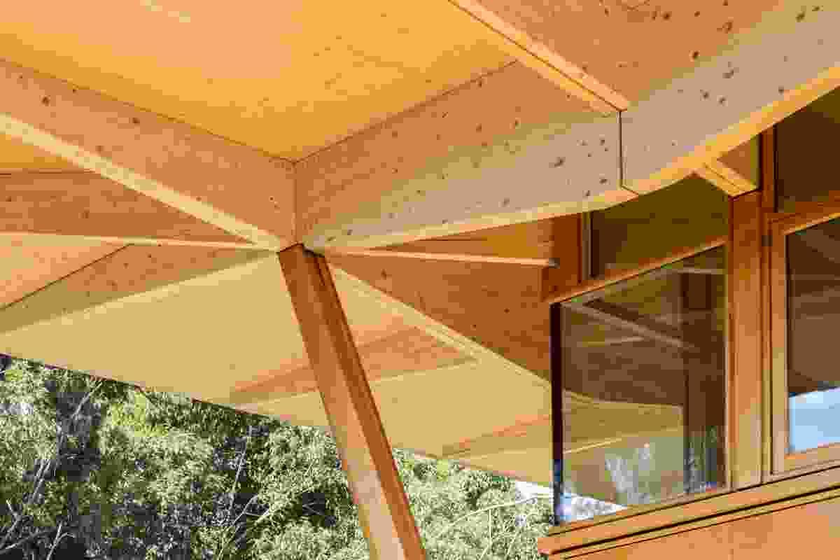 Macquarie University's prefabricated innovation hub, dubbed Incubator, by Architectus.