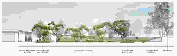 """Cross-section plan of the """"village green"""" courtyard by Aspect Studios."""