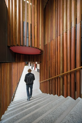 Vertical timber cladding lines a circulation space.