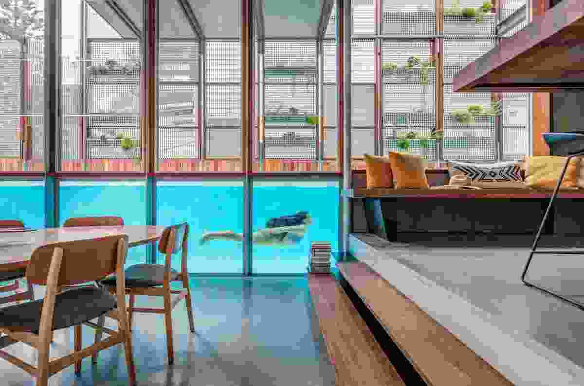 North Bondi Residence by CplusC Architectural Workshop.