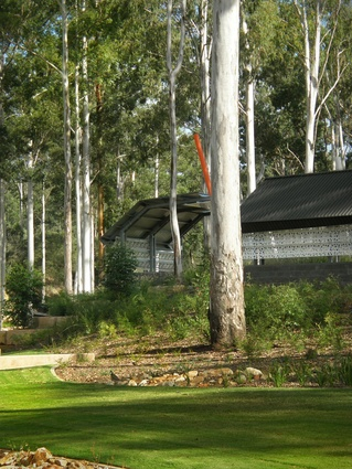Shelter design inspired by the vertical form and wrapping bark of existing Flooded Gums.