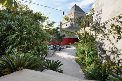 The Terrace Courtyard is intended to be jungly, overgrown and not maintained too strongly.