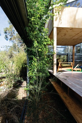 In the place of a verandah, the living area at Garden House is bound by a perimeter of vegetation, contained within the boundaries created by sliding doors.