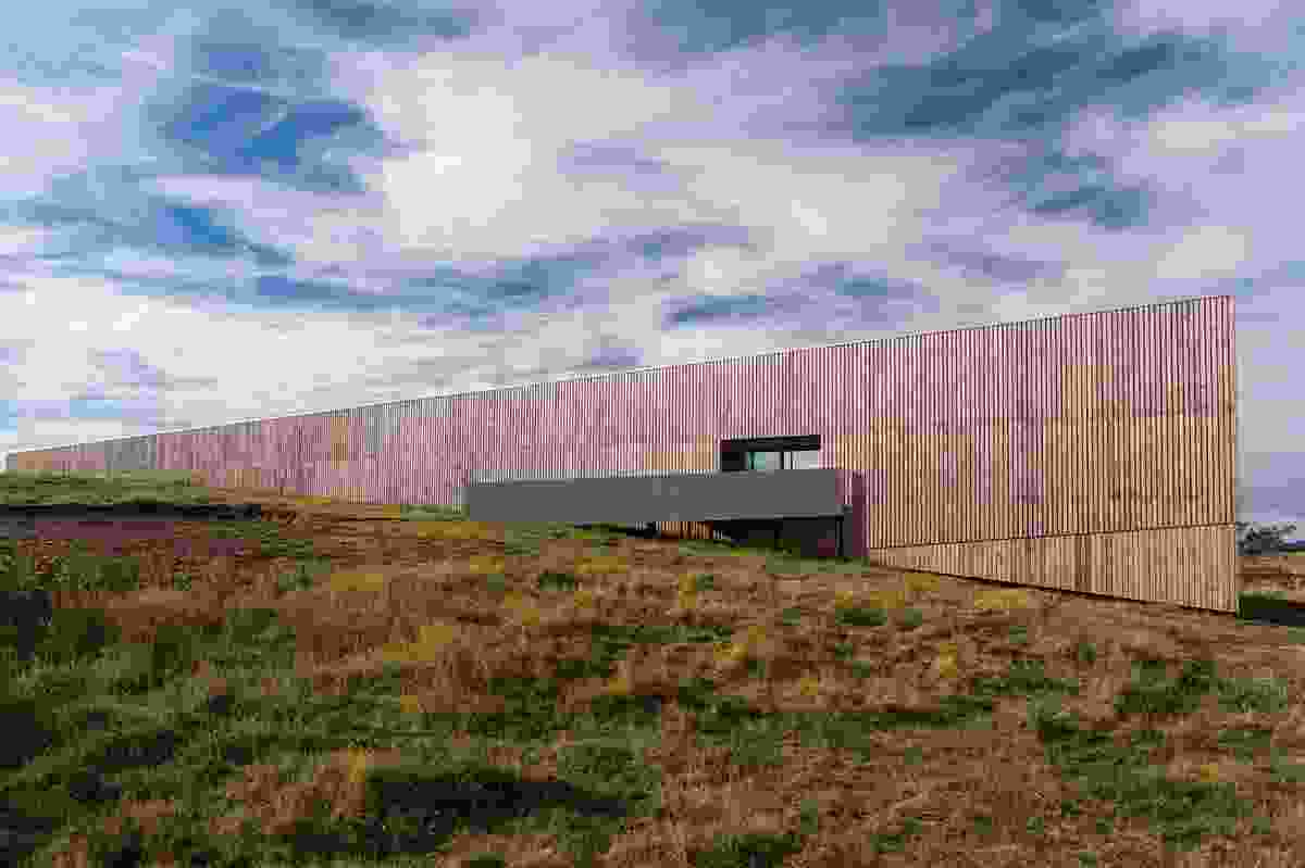 """This """"square, straight, modern"""" home is defined by a macrocarpa wall that wraps three of its faces."""